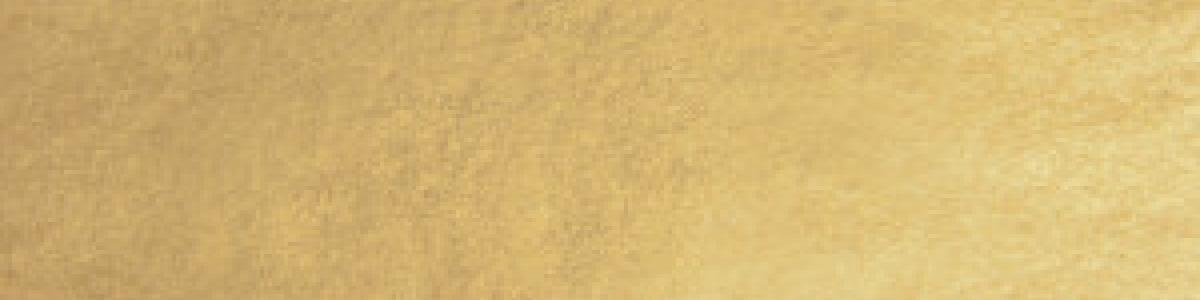 MG_2206_SIMILORcalcoO-colore-25-300x300 imiazione de