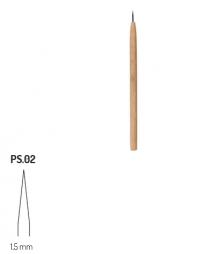 PS2 RGM